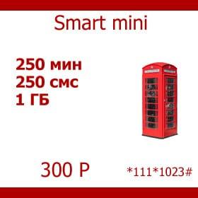 Smart-mini